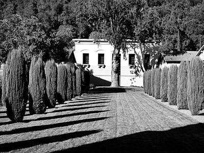 Napa Valley And Vineyards Photograph - Shadows At Clos Pegase Winery by Dominic Piperata