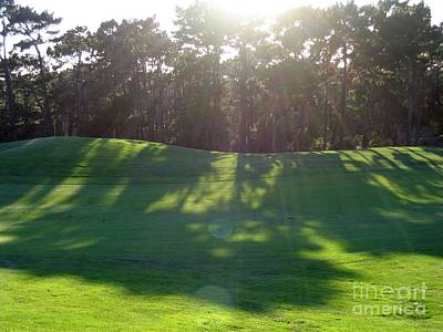 Shadows At Poppy Hills Art Print