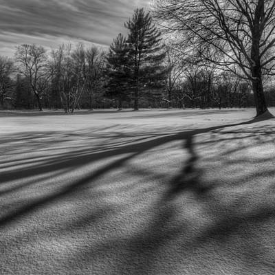 Shadows In The Park Square Print by Bill Wakeley