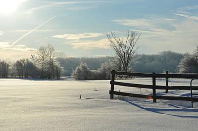 Photograph - Shadows In The Snow by Lisa  DiFruscio