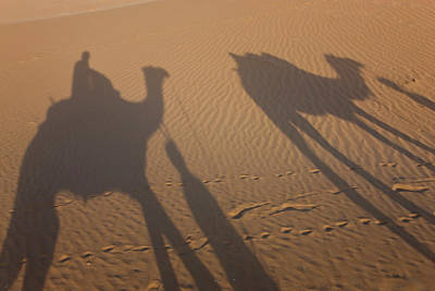 Shadows Of A Camel Train, Thar Desert Art Print by Peter Adams