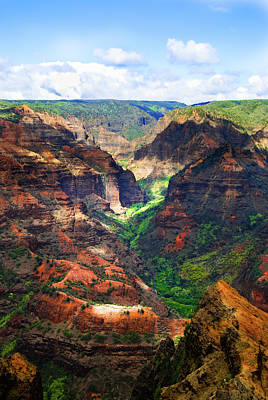 Shadows Of Waimea Canyon Art Print