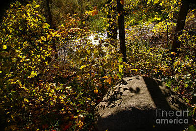 Photograph - Shadows On The Pulpit Stone by Linda Shafer