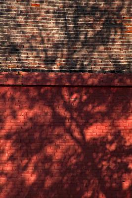 Shadows On The Wall Art Print by Karol Livote