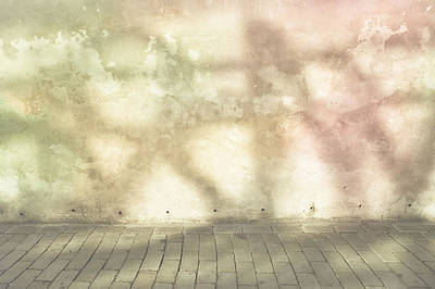 Dappled Light Photograph - Shadows On Wall by Tom Gowanlock