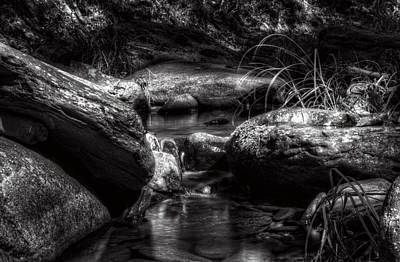 Reflection Photograph - Shadowy Home For Trout In Black And White by Greg Mimbs