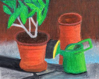 Drawing - Shady Garden Corner by Bav Patel