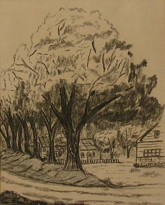 Drawing - Shady Lane by Michael Anthony Edwards