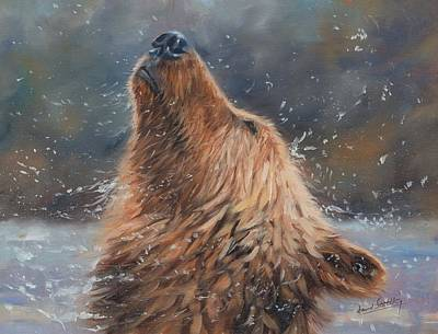 Grizzly Painting - Shake It by David Stribbling