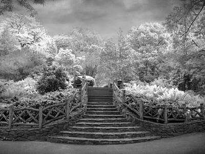 Photograph - Shakespeare's Garden Infrared by Jessica Jenney