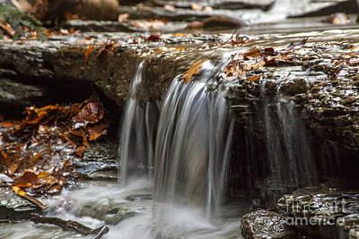 Shale Creek In Autumn Art Print by Darleen Stry