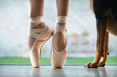 Ballet Shoes Photograph - Shall We Dance by Laura Fasulo
