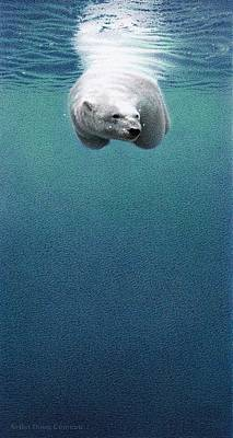 Snow Drifts Drawing - Shallow Dive by Doug Comeau