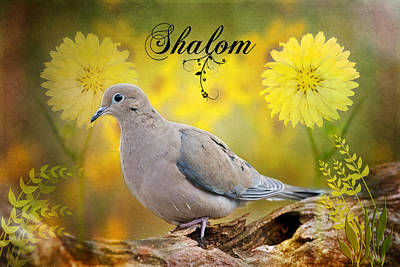 Shalom Art Print by Bonnie Barry