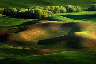 Farming Photograph - Shape by Phillip Chang