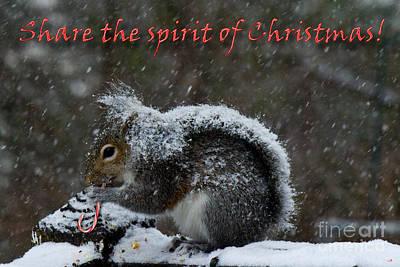 Photograph - Sharing Christmas by Sandra Clark