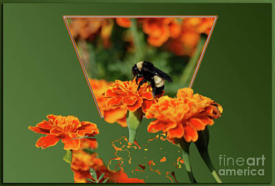 Art Print featuring the photograph Sharing The Nectar Of Life by Thomas Woolworth