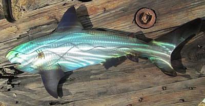 Shark Abstract Metal Wall Art Original by Robert Blackwell