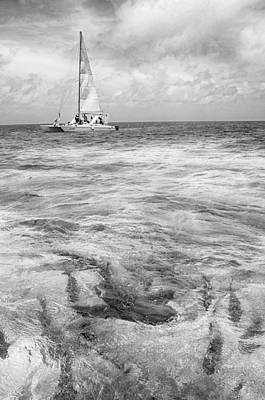 Photograph - Shark N Sail Black N White by Kristina Deane