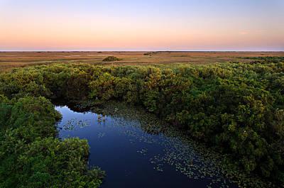 Everglades National Park Photograph - Shark Valley by Jonathan Gewirtz