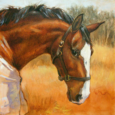 Warmblood Painting - Sharkie Thinks It Over by Tracie Thompson
