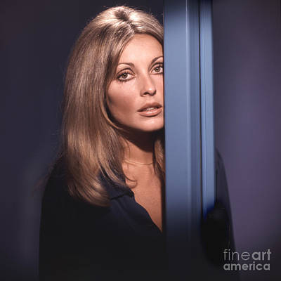 Tate Photograph - Sharon Tate by Frank Bez