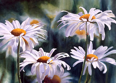 White Daisy Painting - Shasta Parade by Sharon Freeman
