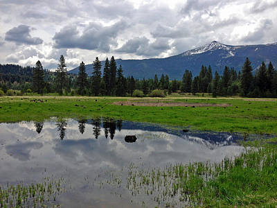 Mt. Shasta Photograph - Shasta Reflections by Kathy Yates