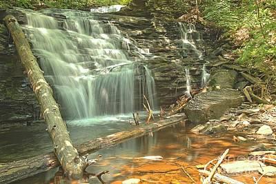 Photograph - Shawnee Falls At Ricketts Glen by Adam Jewell