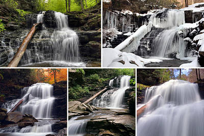 Photograph - Shawnee Falls In Every Season by Gene Walls