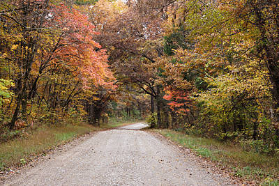 Photograph - Shawnee Forest Road by Sandy Keeton