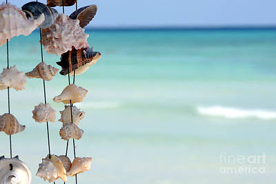She Sells Seashells Art Print by Sophie Vigneault
