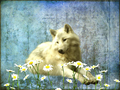 She Wolf Art Print by Sharon Lisa Clarke