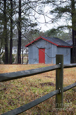 Photograph - Shed by Affini Woodley