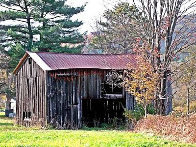 Photograph - Shed In Autumn by Christian Mattison