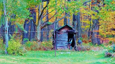 Shed Mixed Media - Shedding A Tear by Sherry Brant