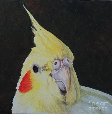 Painting - Sheeka The Cockatiel by Charlotte Yealey