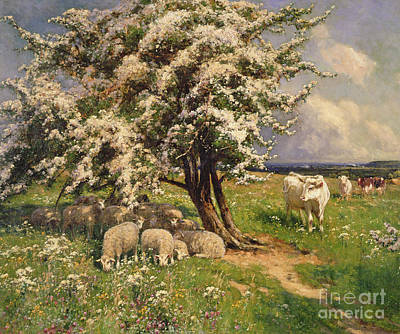 The Sun Painting - Sheep And Cattle In A Landscape by Arthur Walker Redgate