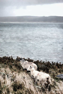 Digital Art - Sheep By The Seashore by Steve Hurt