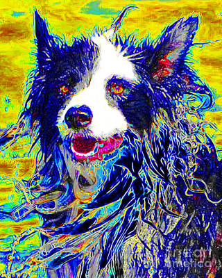 Sheep Dog 20130125v1 Print by Wingsdomain Art and Photography