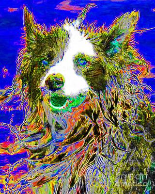 Shetland Sheepdog Digital Art - Sheep Dog 20130125v3 by Wingsdomain Art and Photography