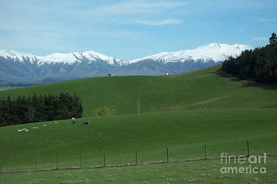 Photograph - Sheep Farm Mountain Scene by John Potts