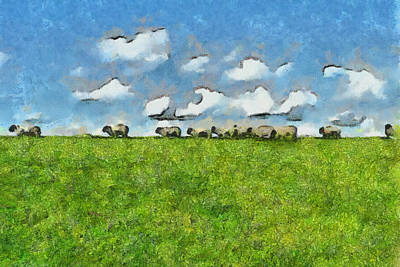 Rural Scenes Drawing - Sheep Herd by Ayse Deniz