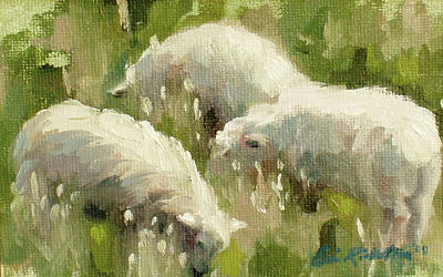 Painting - Sheep In Meadow by Erin Rickelton