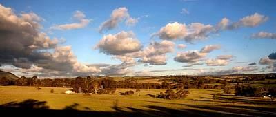 Photograph - Sheep Land In Autumn by David Rich
