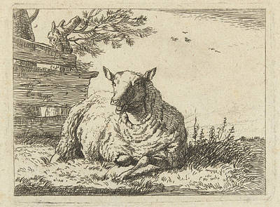 Fence Drawing - Sheep On A Fence, Karel Dujardin, Anonymous by Artokoloro