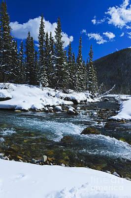 Photograph - Sheep River 2 by Edward Kovalsky