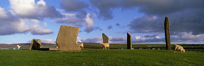 Megalith Photograph - Sheep, Stones Of Stenness, Orkney by Panoramic Images