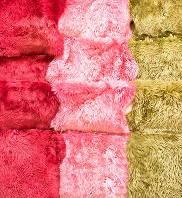 Sheepskin Rugs Art Print