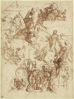 Paolo Caliari Veronese Drawing - Sheet Of Studies For The Martyrdom Of Saint George Recto by Litz Collection